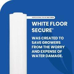 White Floor Secure  Social Asset
