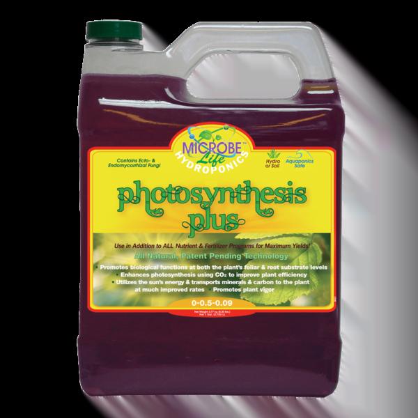 Photosynthesis Plus